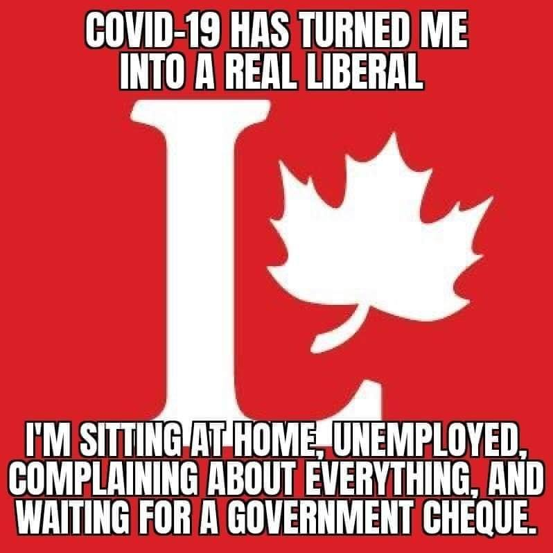 Image showing the logo of the Liberal Party of Canada accompanied by meme text